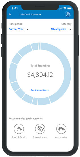Financial Fitness spending overview